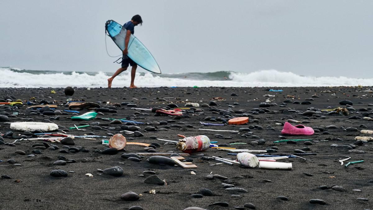 Corona X Parley Busca Voluntarios Para Participar En Parley Ocean School As Chile